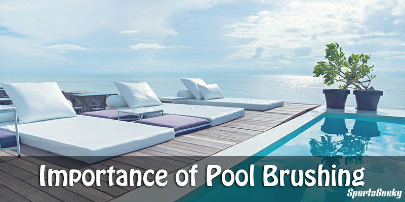 Importance of Pool Brushing